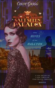 The Salt Sheen Paradox Full Cover Book 1 K